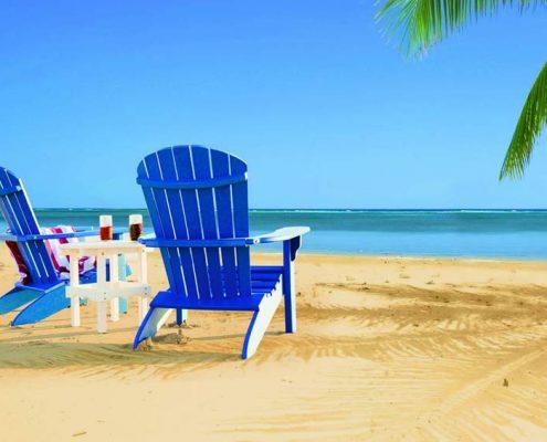 Blue Fanback Chair - Alger Sheds