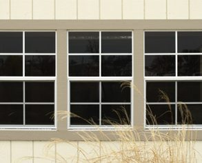 Custom window options